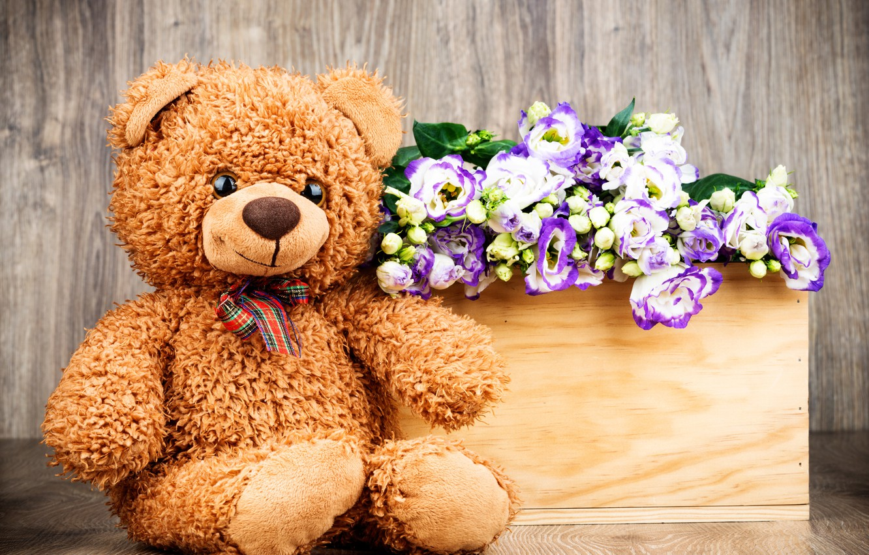 Wallpaper Flowers Gift Bouquet Bear Love Flowers Romantic