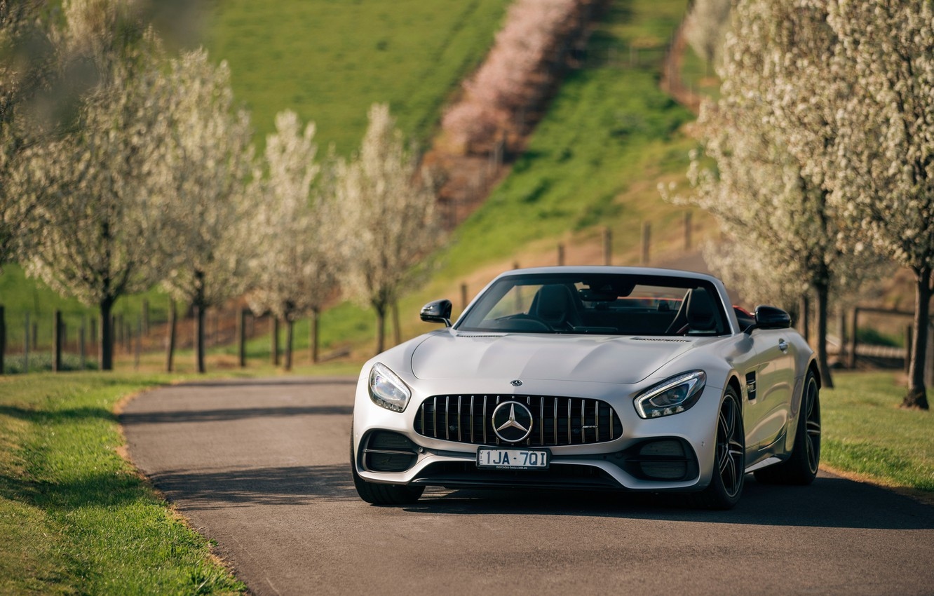 Photo wallpaper trees, Roadster, Mercedes-Benz, supercar, AMG, 2018, GT C