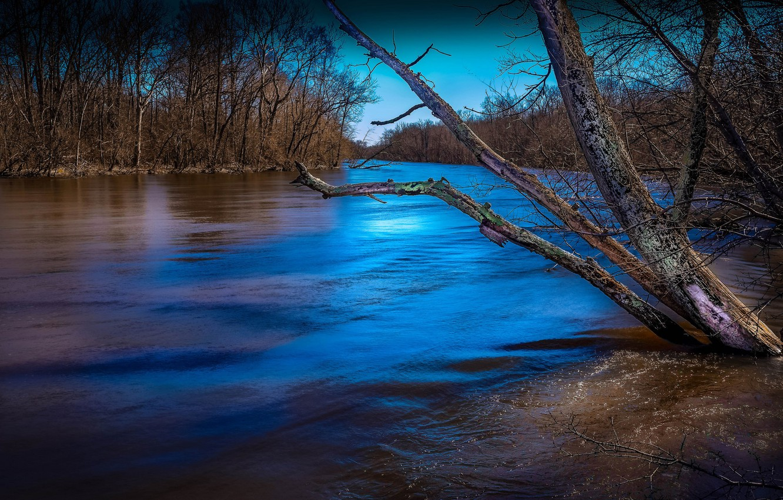 Photo wallpaper autumn, trees, river, Michigan, USA