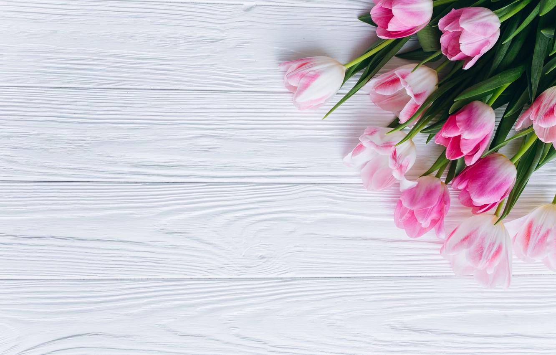 Photo wallpaper flowers, tulips, pink, fresh, wood, pink, flowers, beautiful, tulips, spring, tender