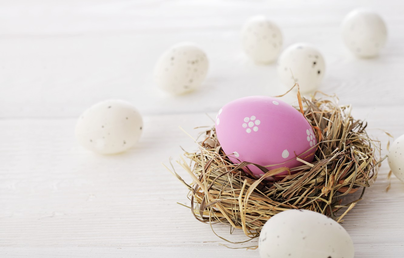 Photo wallpaper Easter, eggs dyed, wood, spring, Easter, eggs, decoration, Happy