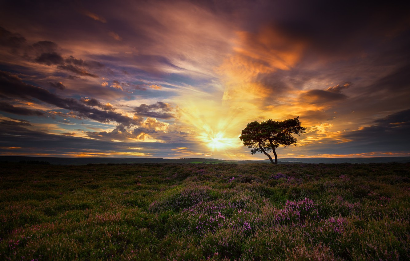 Photo wallpaper the sky, clouds, dawn, England, morning, North Yorkshire,