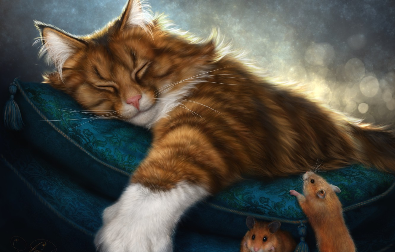 Photo wallpaper cat, sleep, red, pillow, mouse