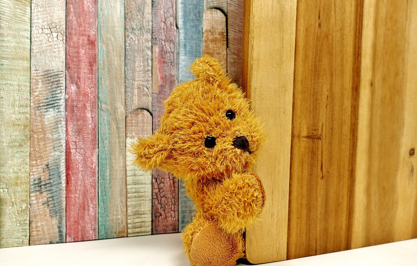 Photo wallpaper toy, bear, Background