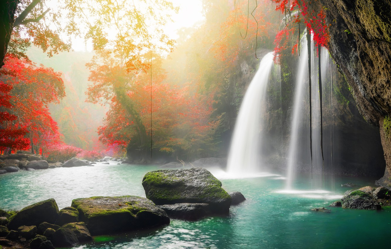 Photo wallpaper autumn, forest, water, trees, nature, river, stones, waterfall, forest, cascade, river, nature, beautiful, autumn, waterfall