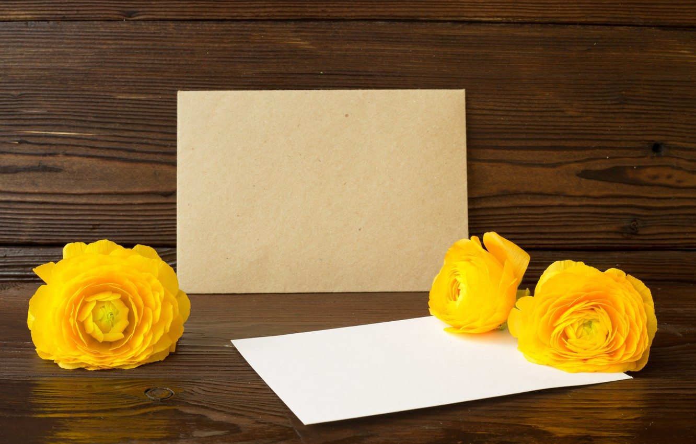 Photo wallpaper flowers, background, postcard