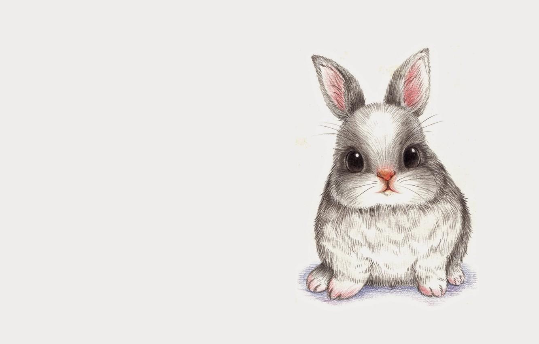 Photo wallpaper animals, figure, rabbit, baby, art, pencil, Bunny, children's
