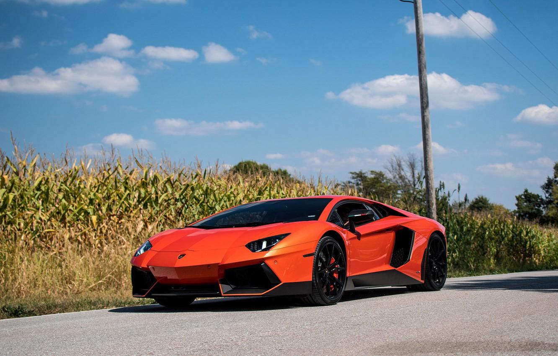 Photo wallpaper Lamborghini, Orange, Aventador, Cornfield