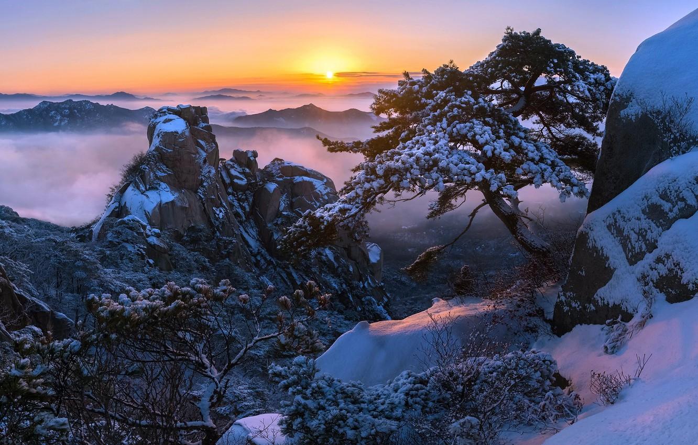 Photo wallpaper winter, the sun, snow, trees, mountains, rocks