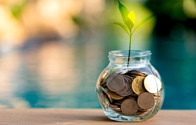 Photo wallpaper macro, money, blur, Bank, coins, bokeh, wallpaper., coins, water surface reflection, as you sow so …