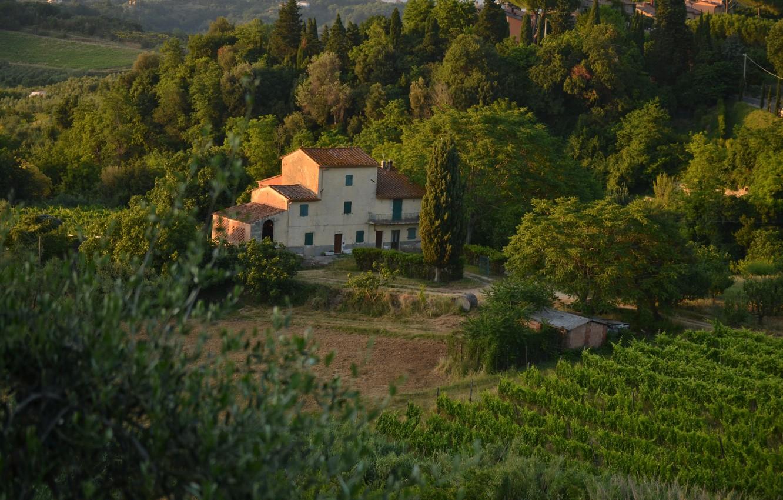 Photo wallpaper Panorama, House, Italy, Nature, Landscape, Italy, Tuscany, Italia, Village, Panorama, Toscana, Tuscany