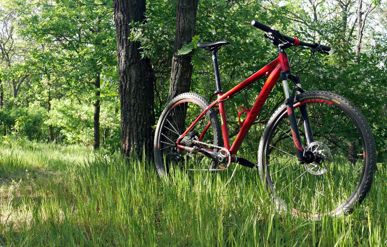 Photo wallpaper grass, Nature, spring, Sport, Bike, Yellowstone, 2018, Bike, Sport, Canyon, Salen