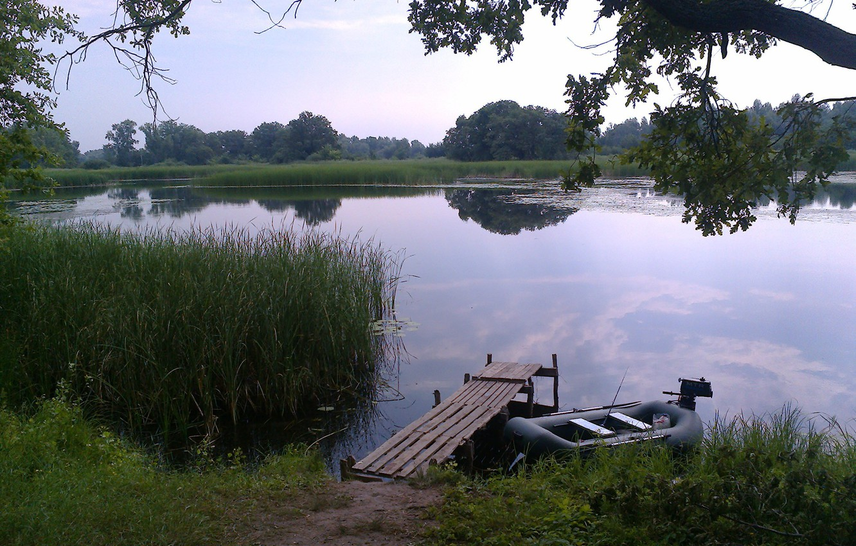 Photo wallpaper summer, trees, river, boat, island, reed, the bridge