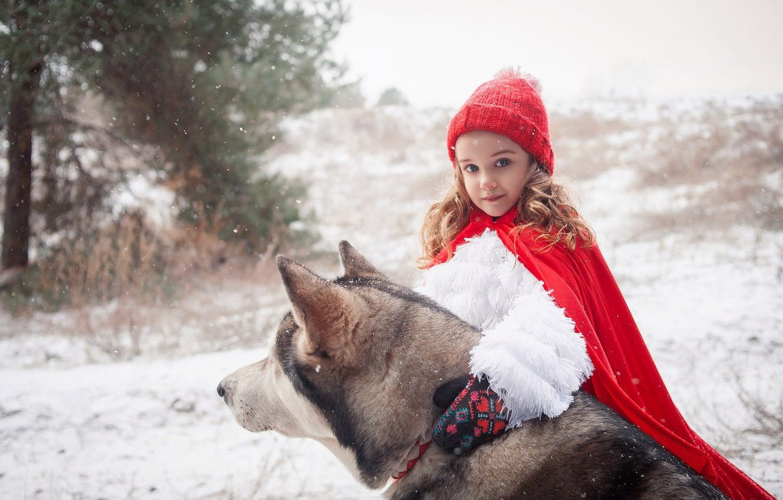 Photo wallpaper winter, forest, snow, tale, dog, dog, fur, collar, cloak, husky, Little Red Riding Hood, the …