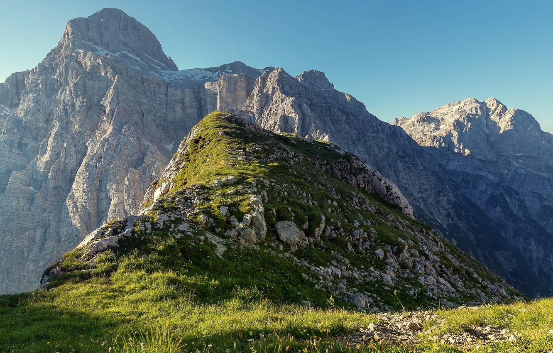 Photo wallpaper greens, grass, mountains, rocks, Sunny