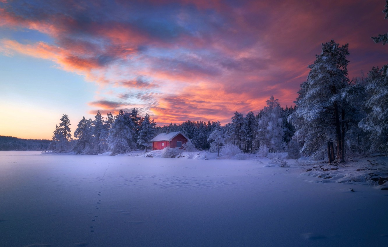 Photo wallpaper winter, forest, the sky, snow, house, paint, house