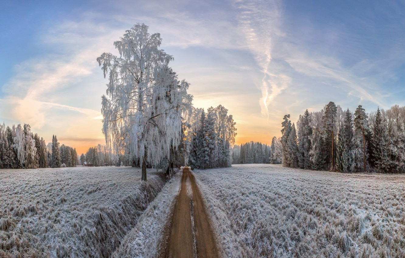 Photo wallpaper winter, frost, road, morning