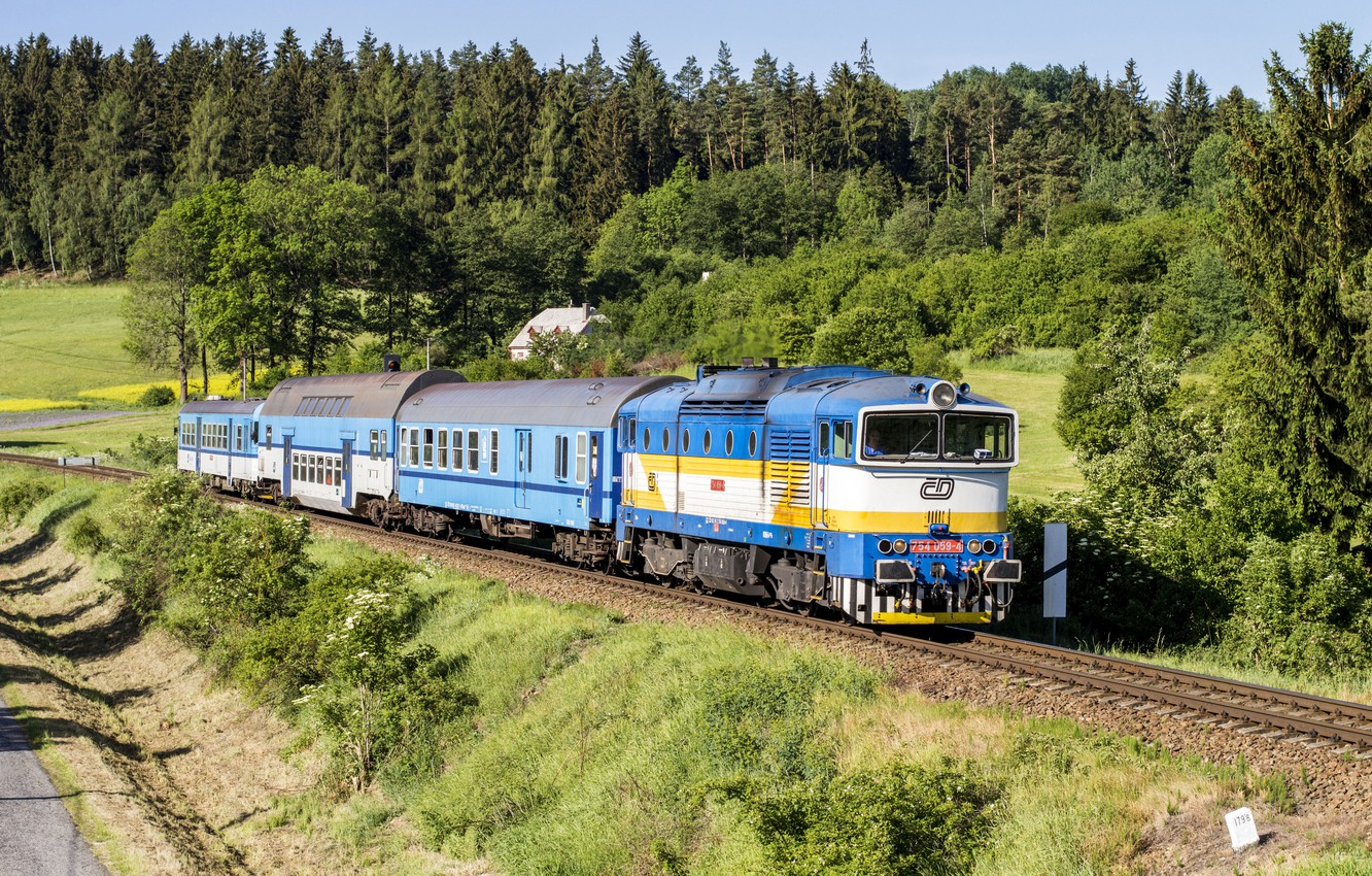 Photo wallpaper forest, the way, train, cars, railroad, locomotive, forests, trains, railroads