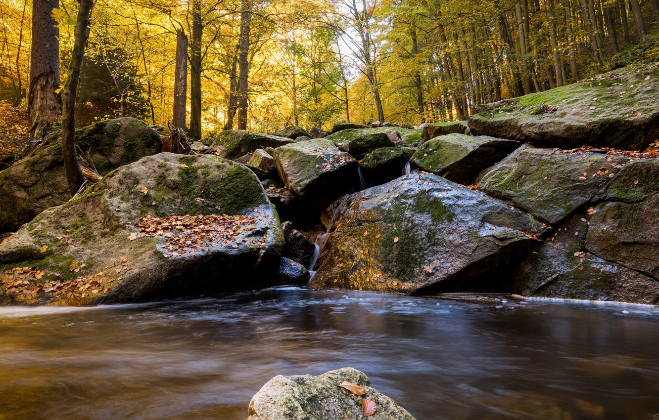 Wallpaper Autumn Forest Water River Stones Waterfall Hdr