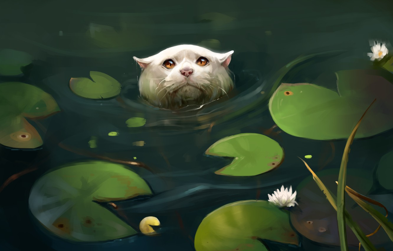 Photo wallpaper cat, leaves, pond, water lilies, by SalamanDra-S