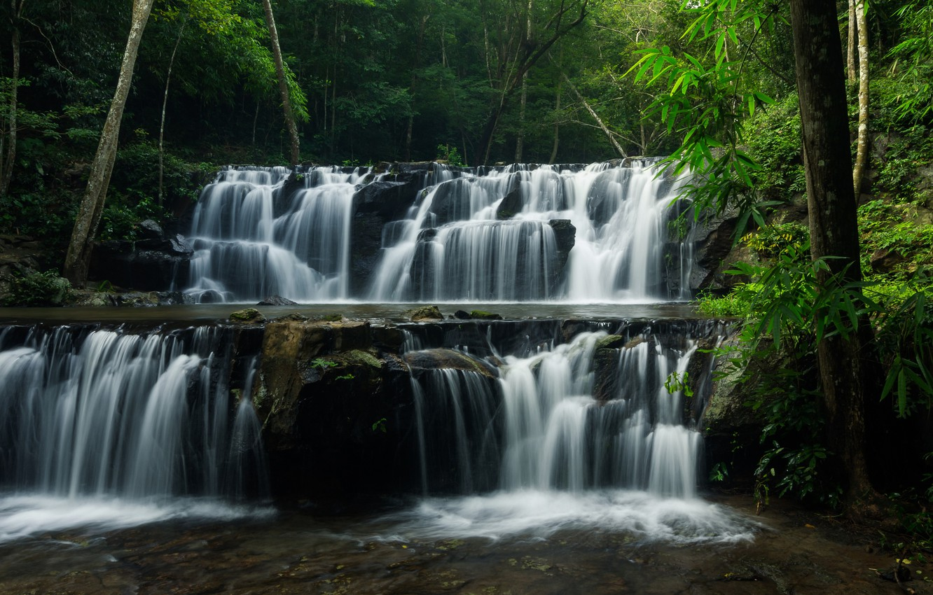Photo wallpaper forest, trees, nature, river, waterfall, stream