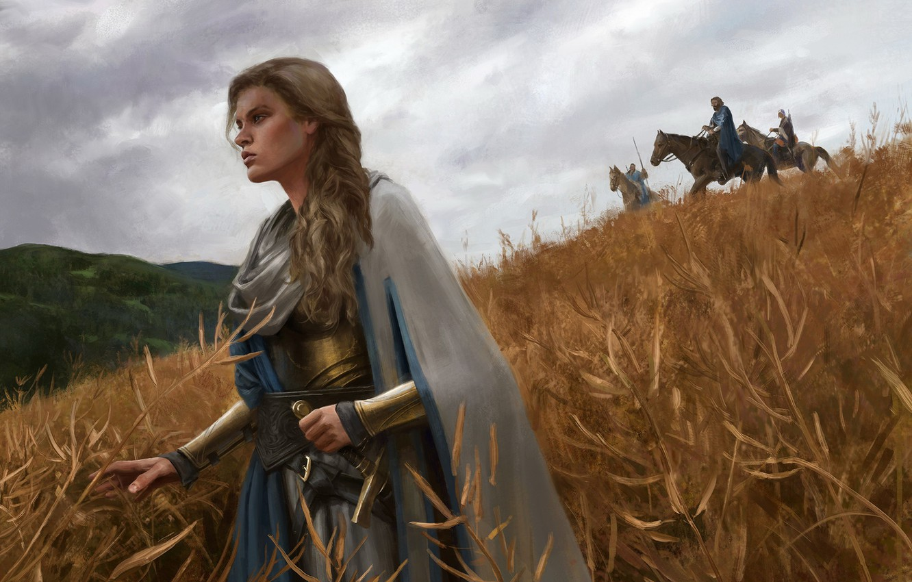 Photo wallpaper forest, the sky, girl, weapons, horse, Field, sword, armor, warrior, Gal Or