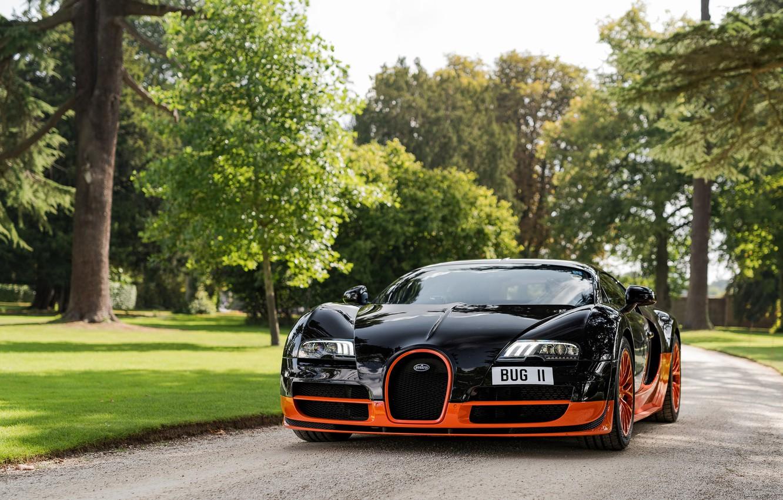 Photo wallpaper Park, black, Veyron, Bugatti Veyron, hypercar
