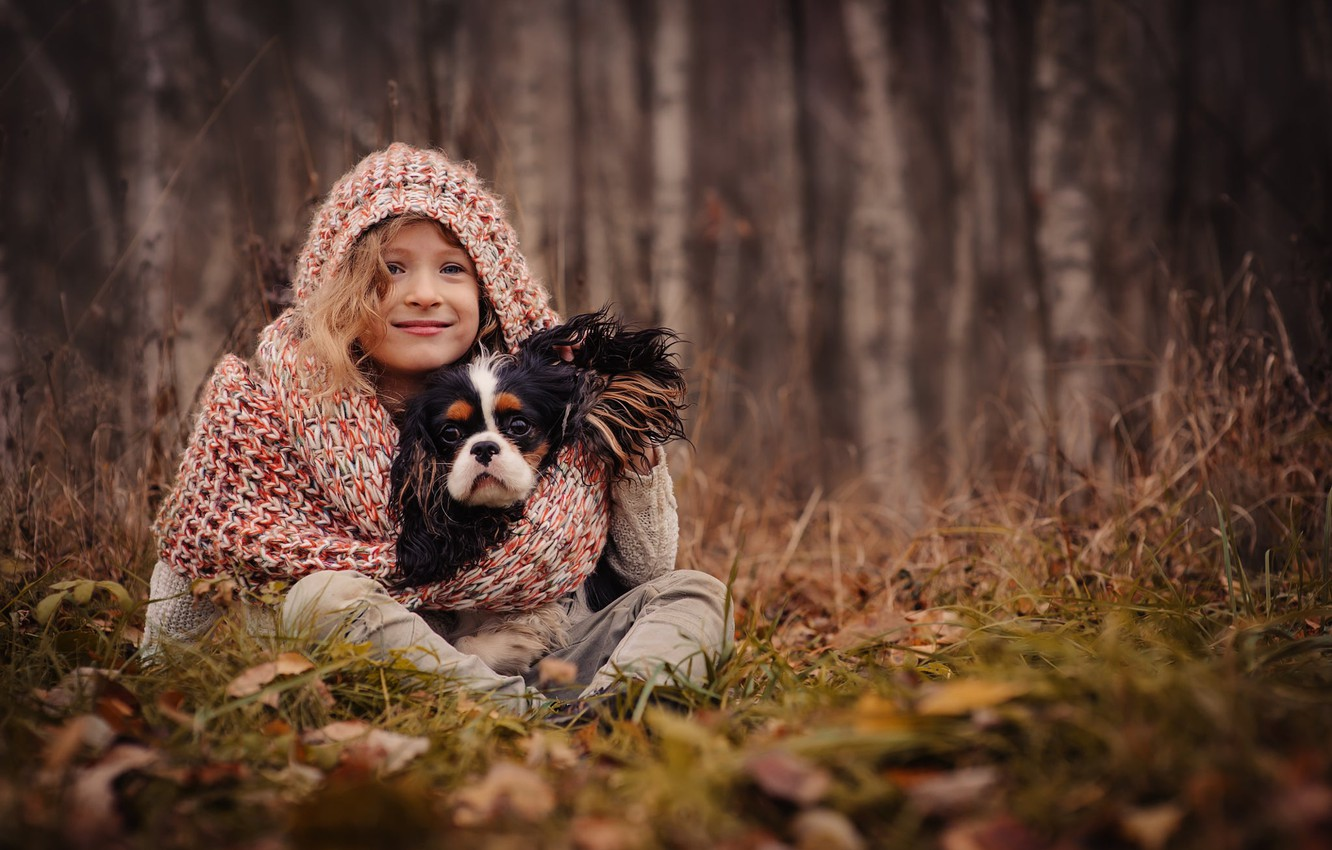 Photo wallpaper autumn, grass, leaves, trees, nature, dog, scarf, hood, girl, dog
