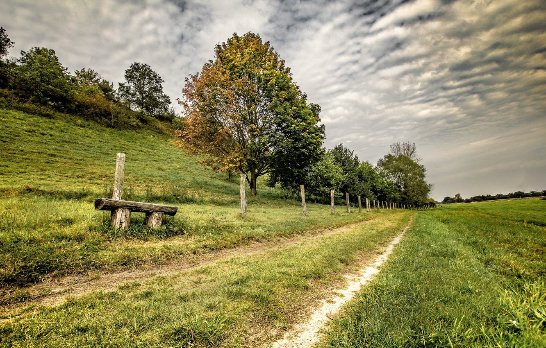 Photo wallpaper road, nature, bench