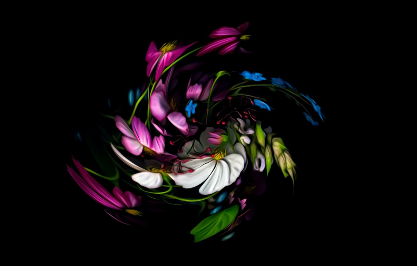 Photo wallpaper abstraction, fantasy, black background, picture, floral spiral