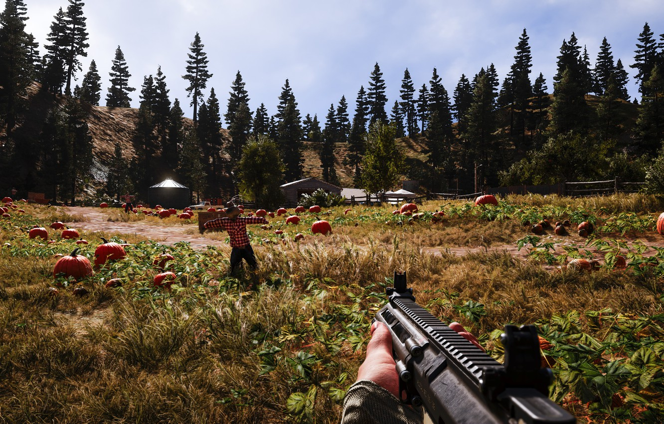 Wallpaper Weapons The Game Far Cry 5 Images For Desktop Section