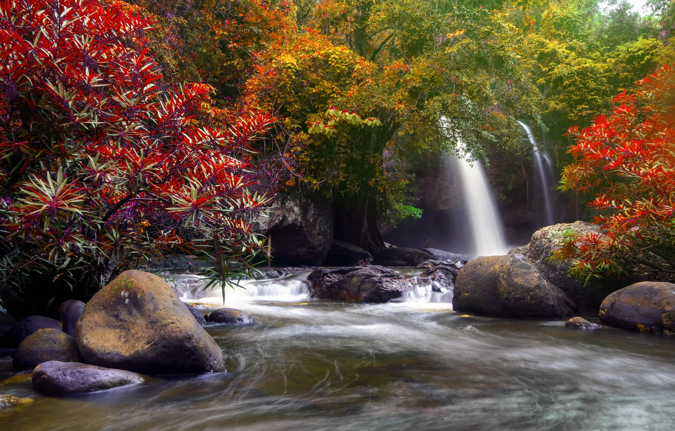 Photo wallpaper autumn, forest, water, trees, nature, river, waterfall, forest, cascade, river, nature, beautiful, autumn, waterfall