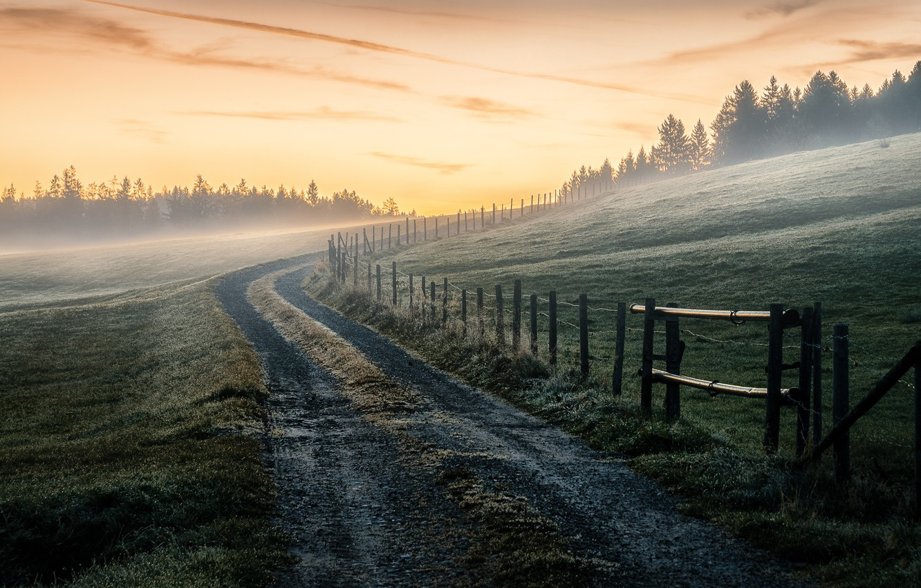 Photo wallpaper road, field, nature, fog, the fence, morning