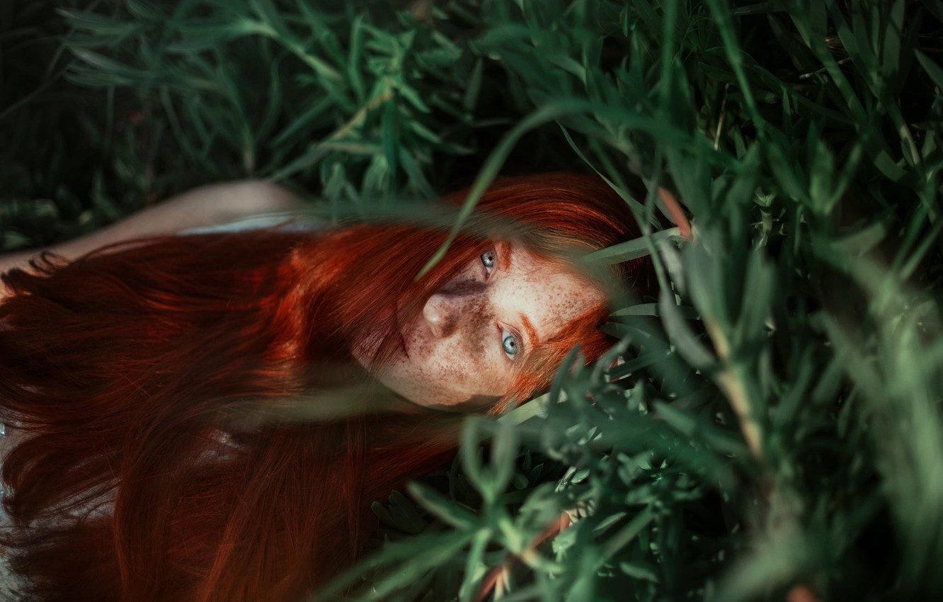 Photo wallpaper grass, girl, face, mood, freckles, red, redhead, long hair, Ronny Garcia, freckled, Alison Sobarzo After …
