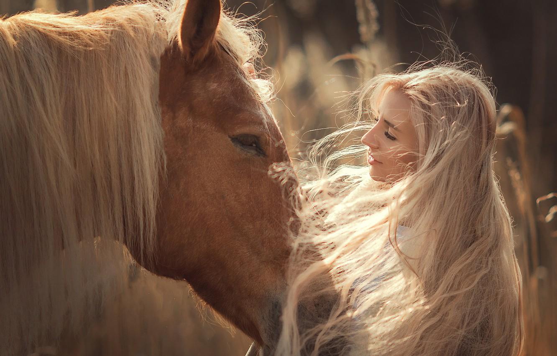 Photo wallpaper face, girl, face, mood, horse, horse, mane, long hair, Annie Of Antikov