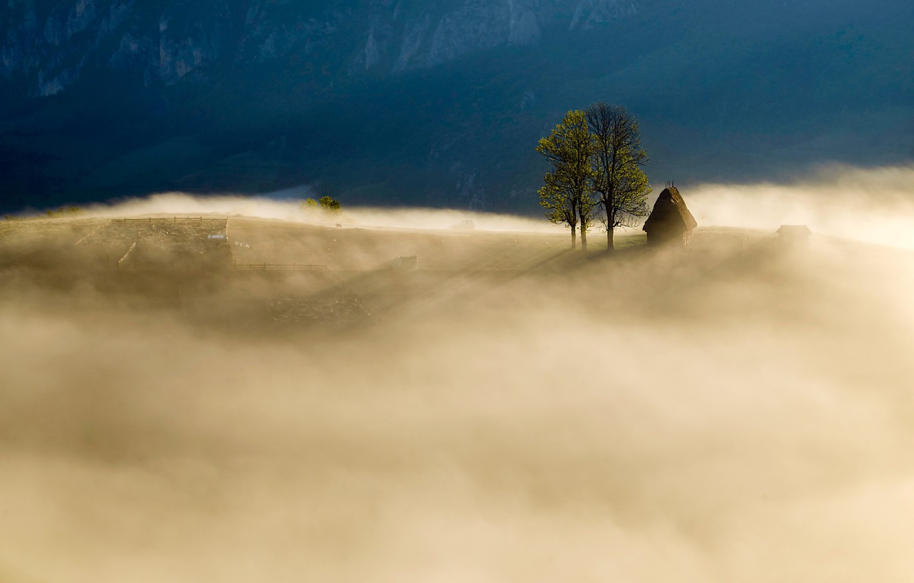 Photo wallpaper mountains, nature, fog, field, morning