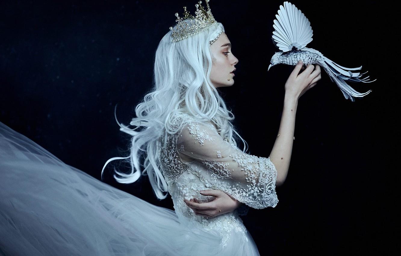 Photo wallpaper girl, style, mood, bird, crown, hands, dress, Princess, blue hair, the dark background, Bella Kotak