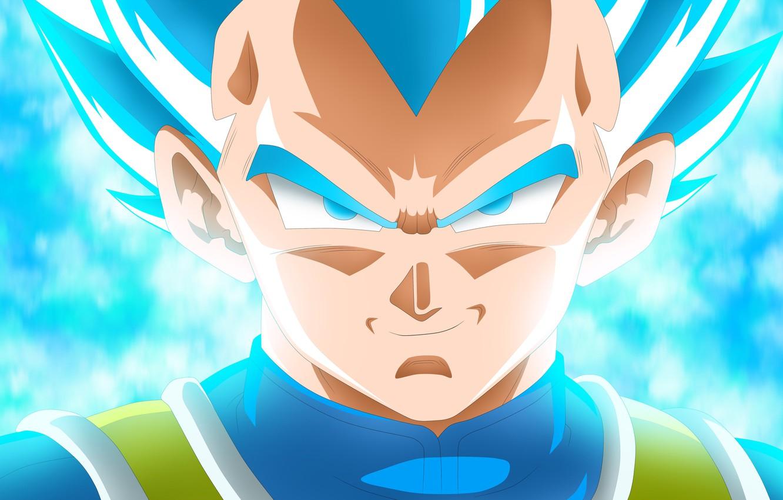 Photo wallpaper Blue, Super Saiyan, Vegeta Dragon Ball