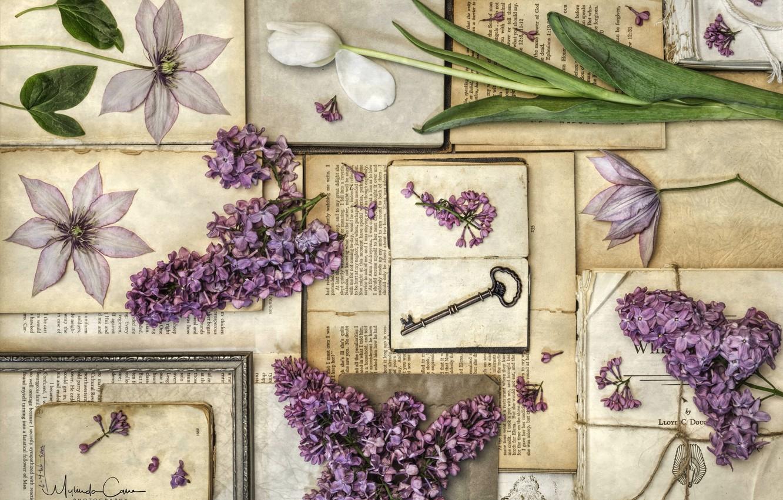 Photo wallpaper books, Tulip, key, vintage, lilac, clematis, herbarium