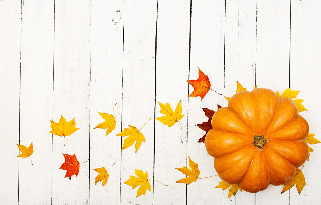 Photo wallpaper autumn, leaves, pumpkin, the gifts of autumn