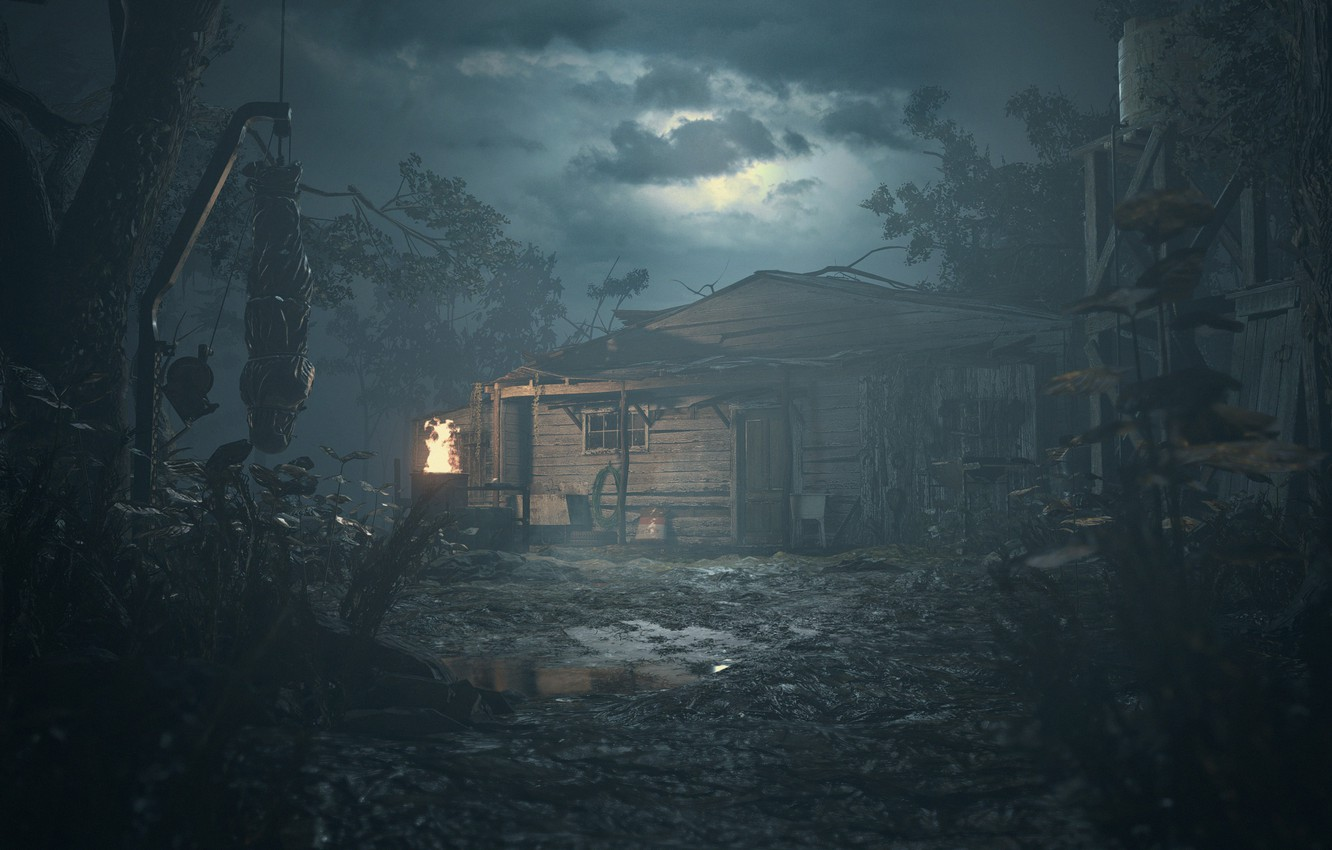 Wallpaper girl, zombie, house, game, woman, dead, night