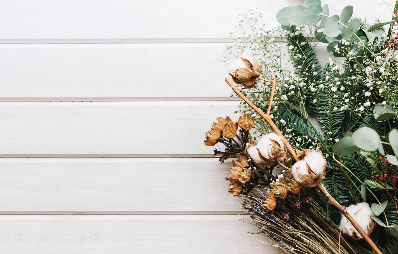 Photo wallpaper greens, spruce, bouquet, cotton