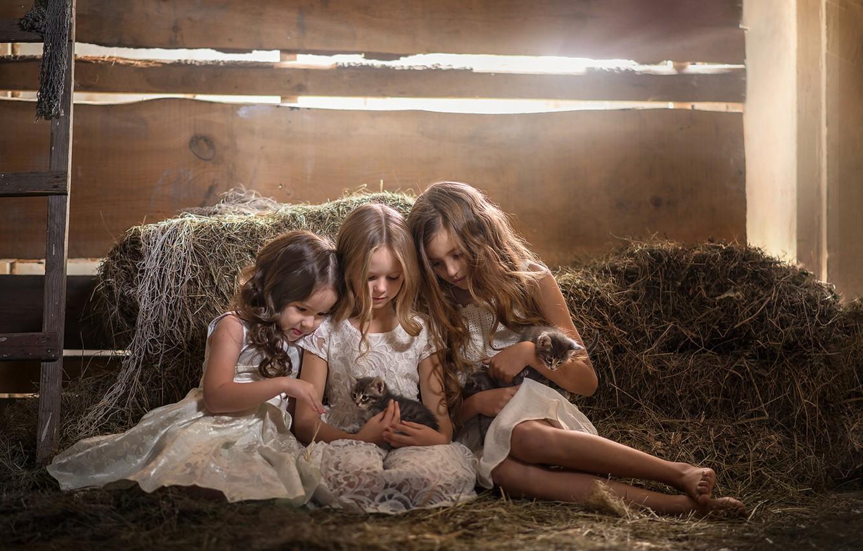 Photo wallpaper hair, girls, hay, kittens, girlfriend