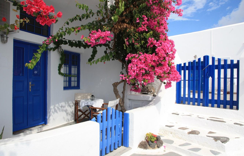Photo wallpaper Flowers, gate, Santorini, Greece, House, wicket, Flowers, Santorini, Greece, Yard, bougainvillea