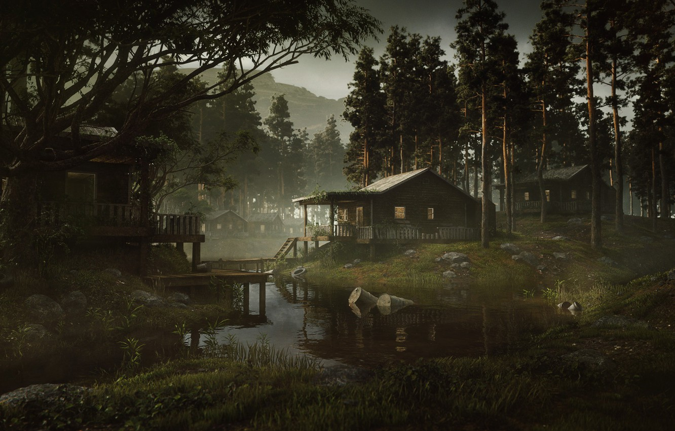Photo wallpaper forest, mountains, home, pollution, swamp town