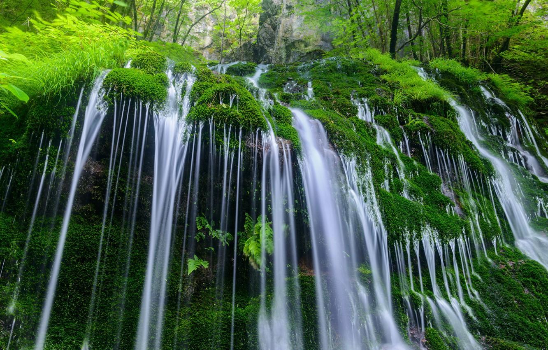 Photo wallpaper water, nature, stones, vegetation, waterfall, moss