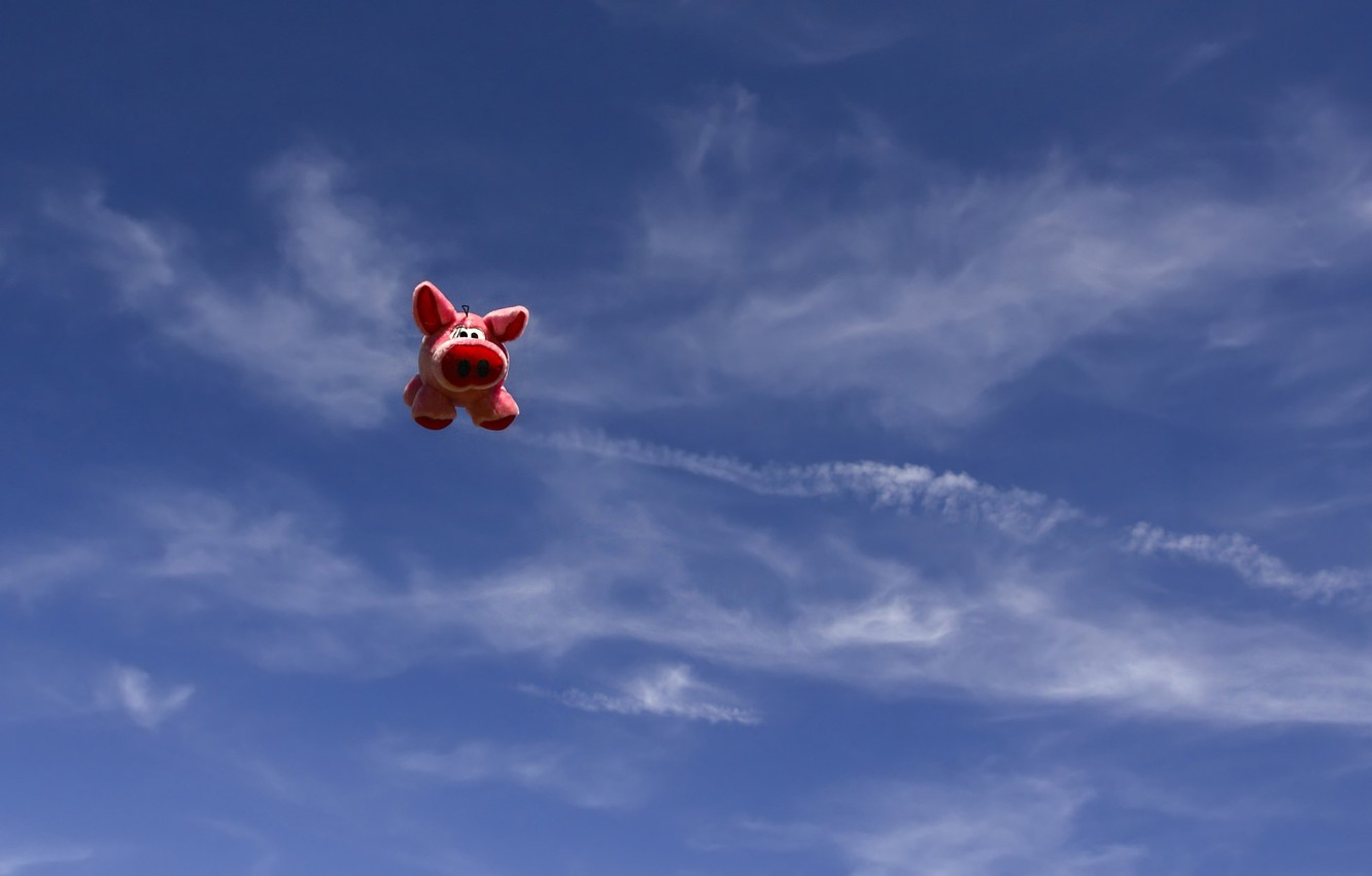 Photo wallpaper the sky, toy, pig, pig, flying pig