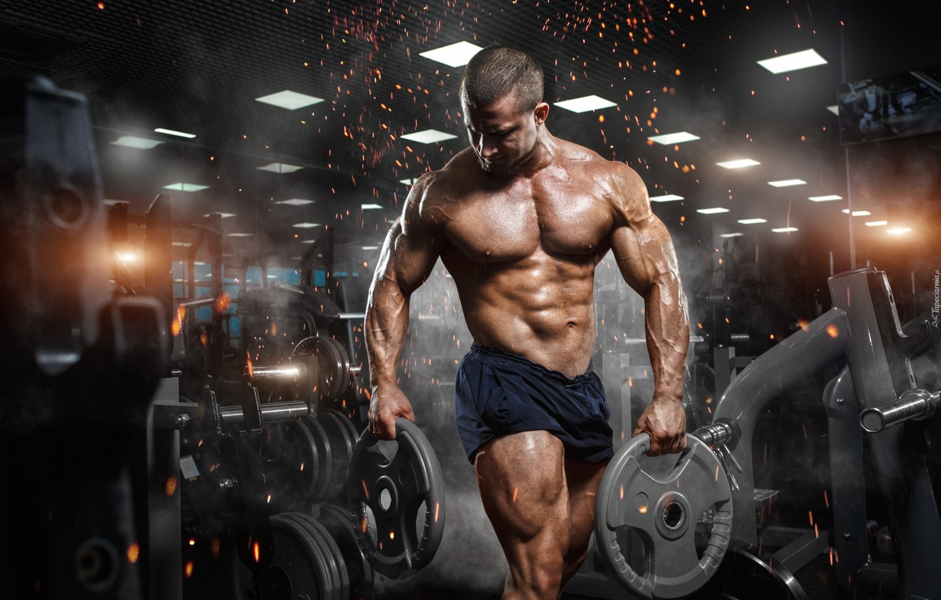 Photo wallpaper muscle, muscle, bodybuilding, press, pose, training, athlete, fitness, gym, bodybuilder, training, abs, Gym, bodybuilder, barbell, …