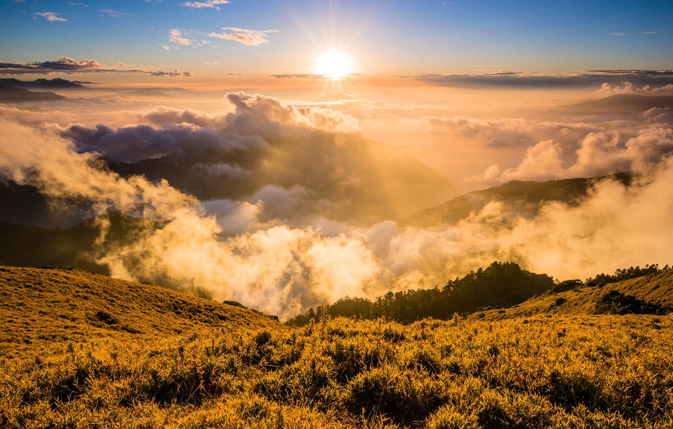 Photo wallpaper forest, the sky, grass, the sun, clouds, rays, light, landscape, mountains, nature, fog, dawn, the ...