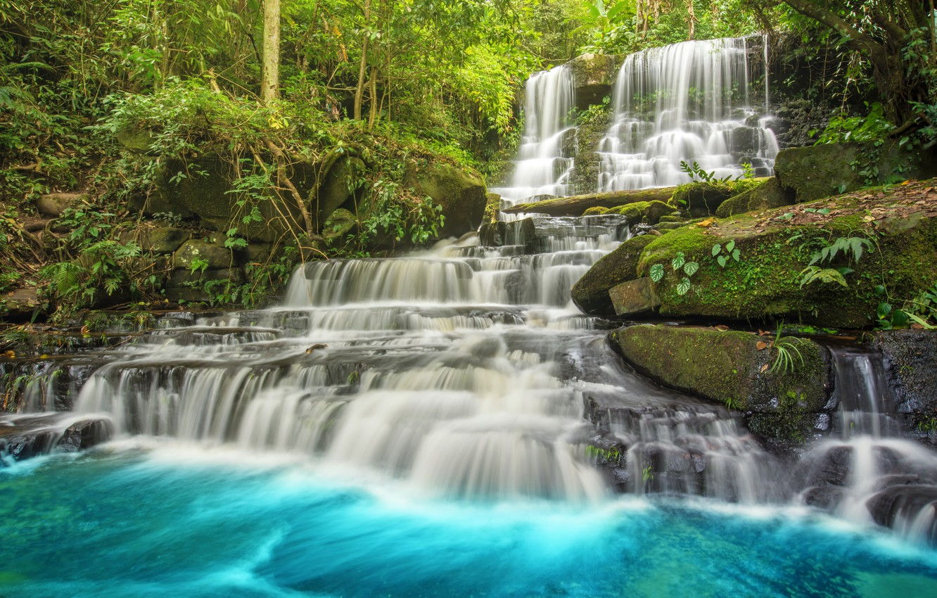 Wallpaper Forest River Waterfall Forest River Landscape